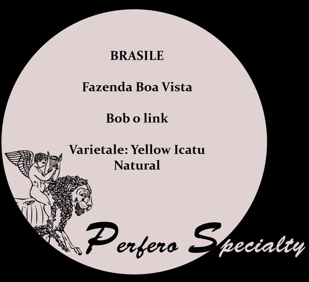 brasile perfero